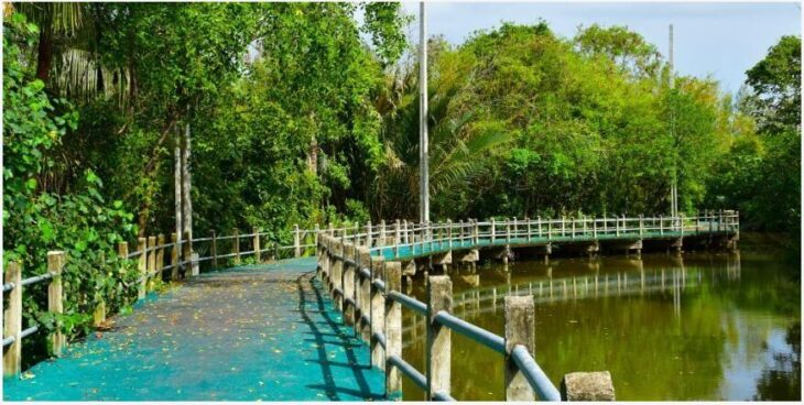 Take a bike ride to the Bangkok jungle