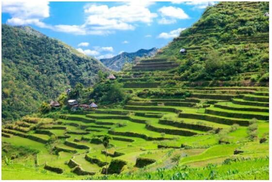 Trekking in North Vietnam